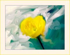 Gelbe Blüte im Winter