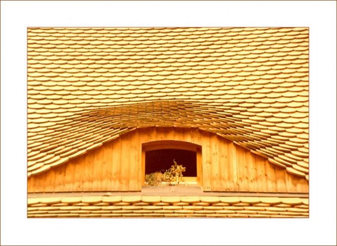 Sonnenlicht auf Dachschindeln