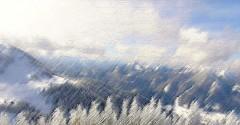 Felfries Bergwelt