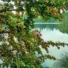 See im Oktober