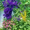 Blumen  - Mix