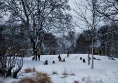 Winterfreuden