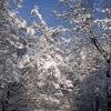 Ein Wintertag in München