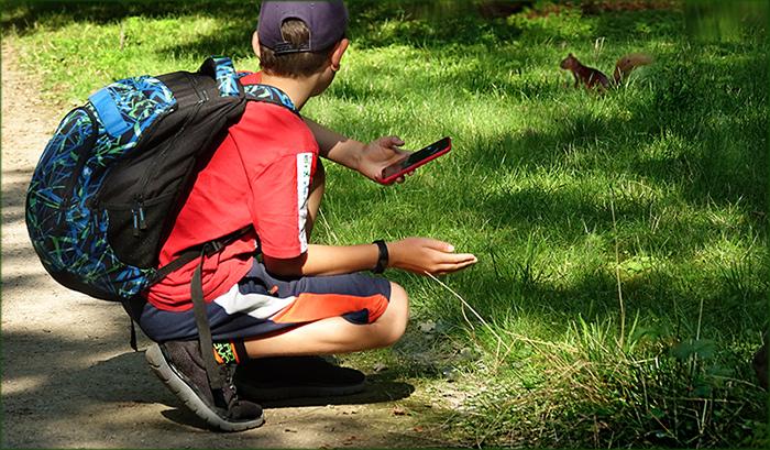 Junger Wanderer entdeckt das Eichhörnchen