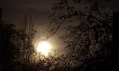 Sonnenaufgang im Dezember