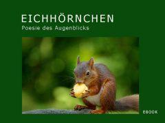 """Mein neues EBOOK """"Die Poesie des Augenblicks"""""""