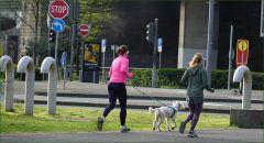 Joggerinnen mit Hund