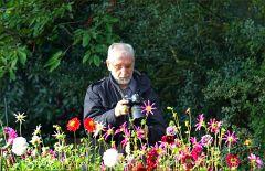 Ein Fotograf bei den Dahlien