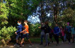 Waldwanderung einer Schulklasse