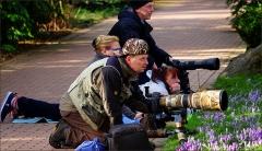 Fotografen auf der Pirsch mit Teleobjektiv