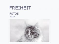 Neues Ebook / Cover