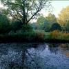 Kleiner See im November