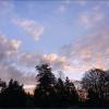 Morgenhimmel im Februar