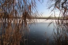 einfrierender See