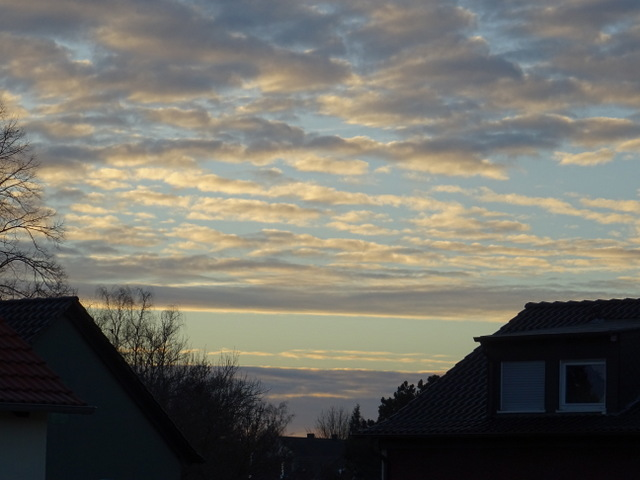 Blick aus dem Fenster heute morgen