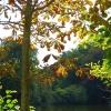 Der Herbst setzt Akzente!