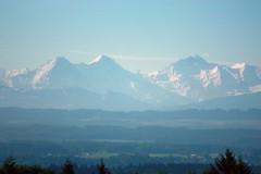 Jomo: Alpenpanorama