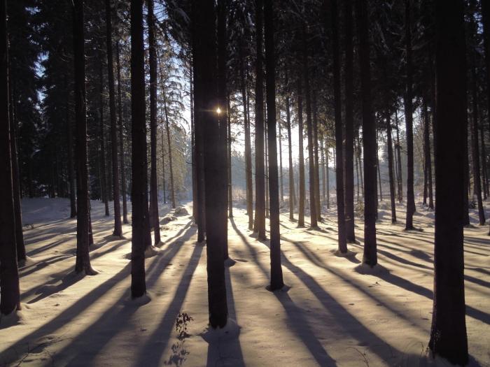 Graziella: Licht und Schatten