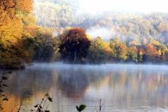 Sylke: Herbstnebel