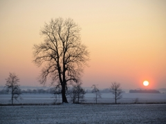 Christine: Winterlandschaft