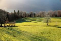 Jomo: Herbstliche Landschaft