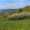 Ausblick Im Frühling