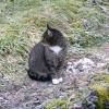 Besuch im Garten (3)