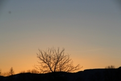 Jomo: Abendhimmel