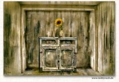 Teddynash: Vase mit Sonnenblume