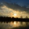 Violette: Sonnenuntergang