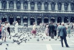 Rhonda: Markusplatz in Venedig 1959