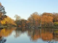 Quassel: Herbststimmung am See