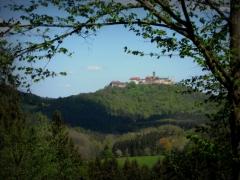 Rosenkohl: Wartburg