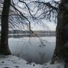 Weiher im Winter