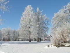 Graziella: Winterlandschaft