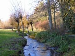 Bussi: Flusslandschaft