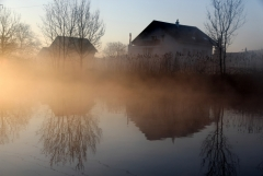Jomo: Morgennebel am See