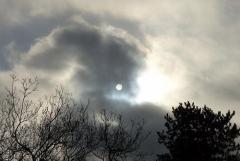 Bussi: Die Sonne an einem grauen Januarhimmel